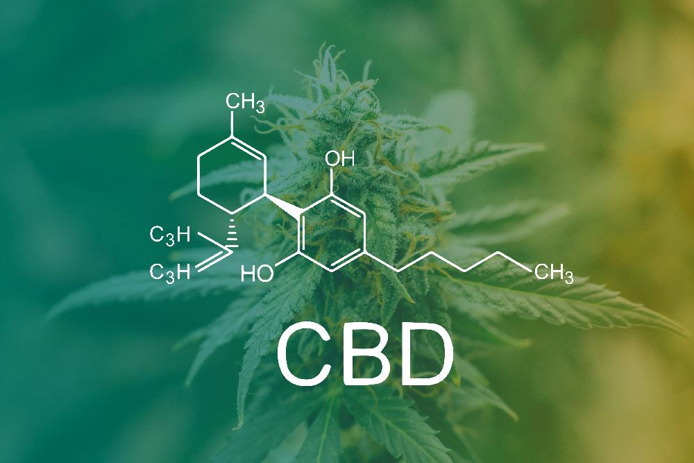 What Is CBD Oil? - cbd